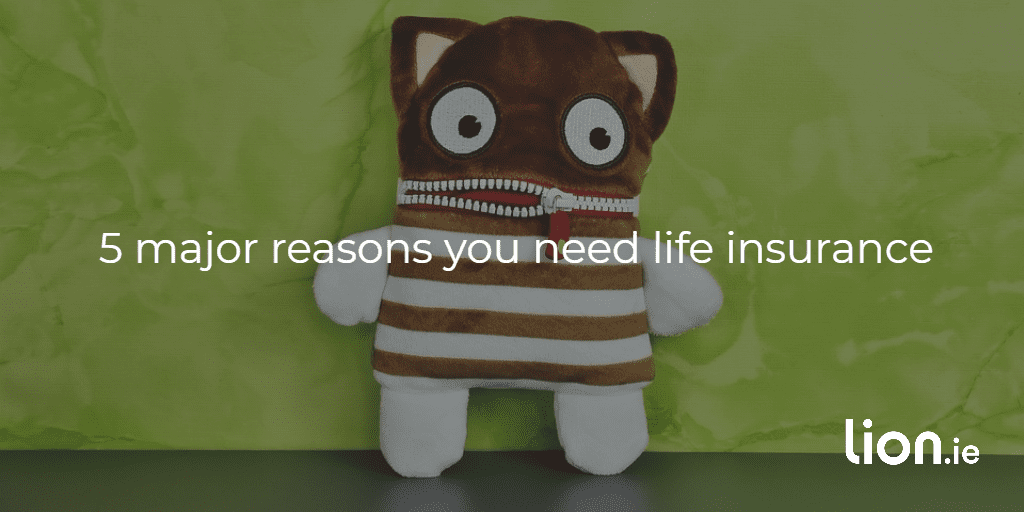 reasons you need life insurance